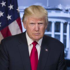 Donald tiny prick Trump